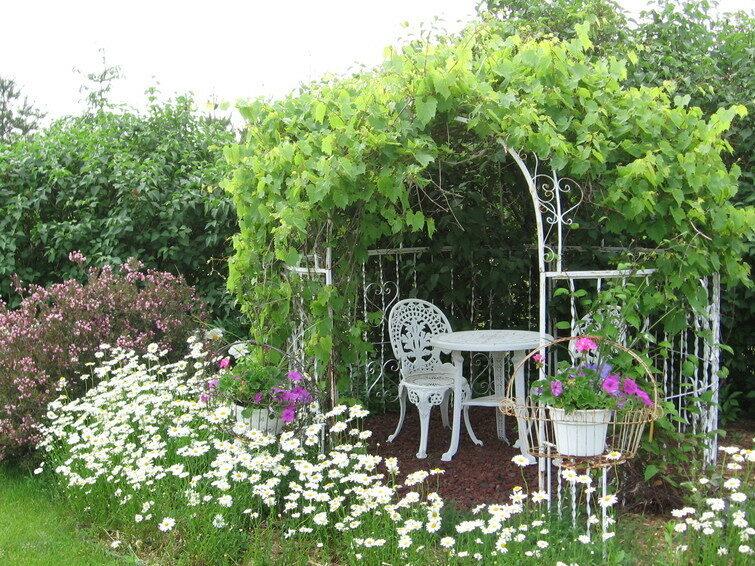 Gardens & Pond, Cameo Rose Victorian Country Inn